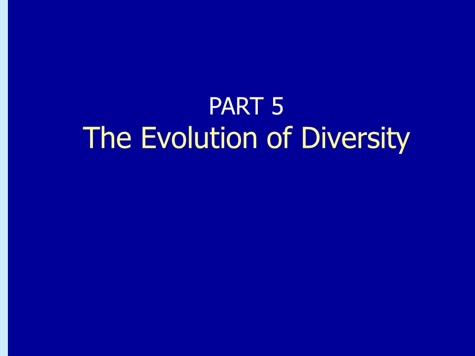 The Evolution of Diversity