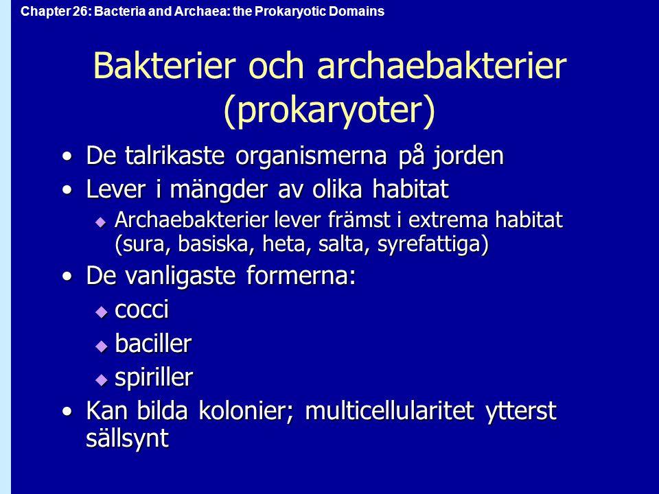 Bakterier och archaebakterier (prokaryoter)