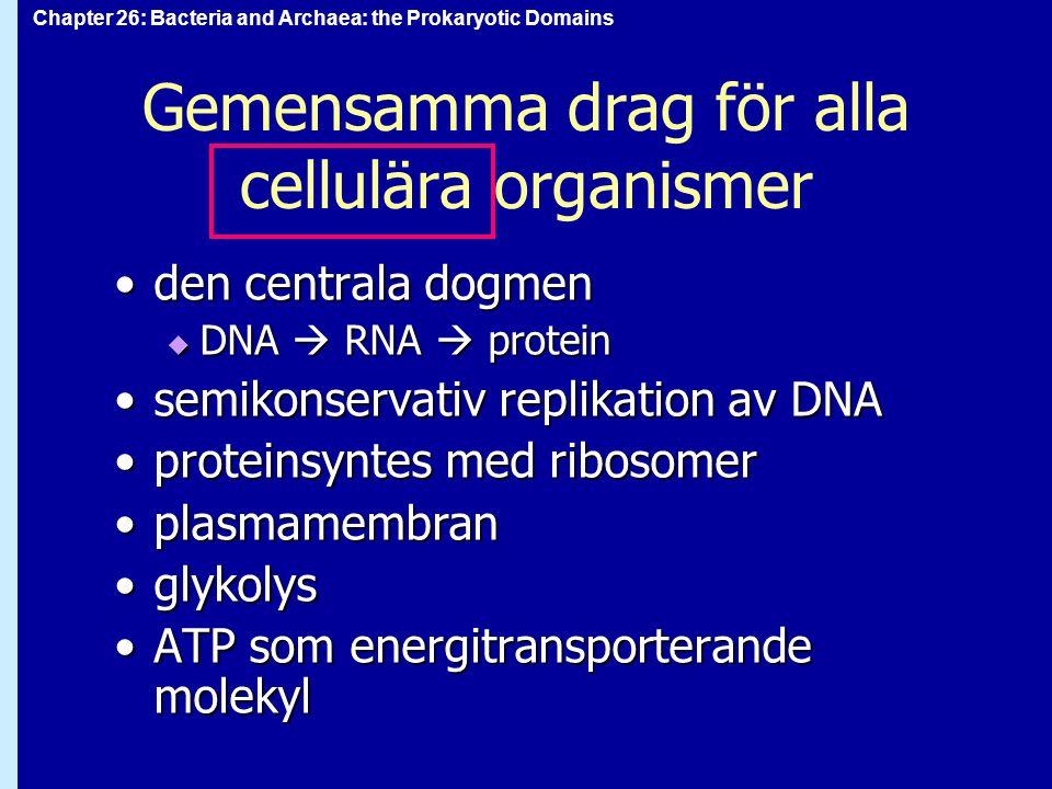 Gemensamma drag för alla cellulära organismer
