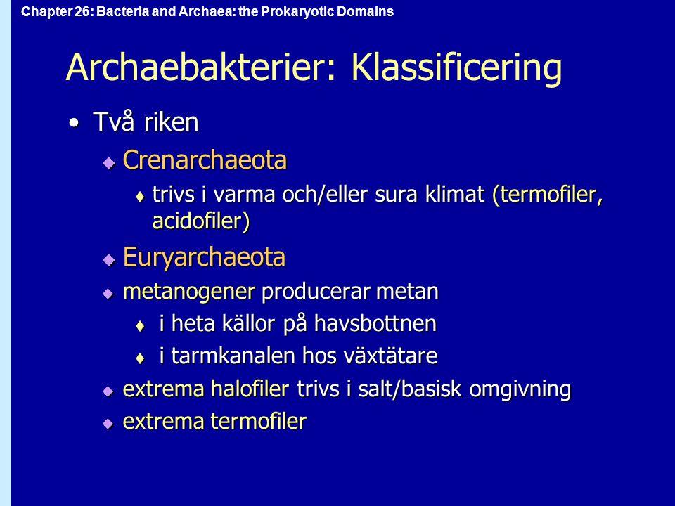 Archaebakterier: Klassificering