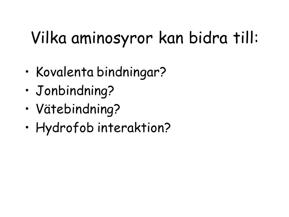 Vilka aminosyror kan bidra till: