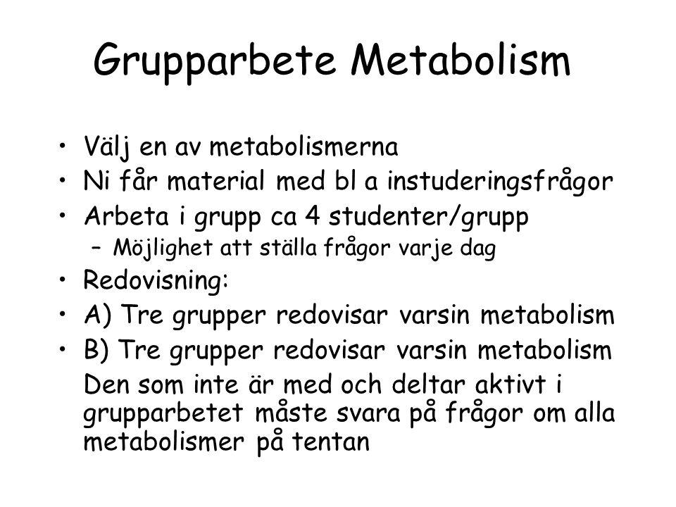 Grupparbete Metabolism