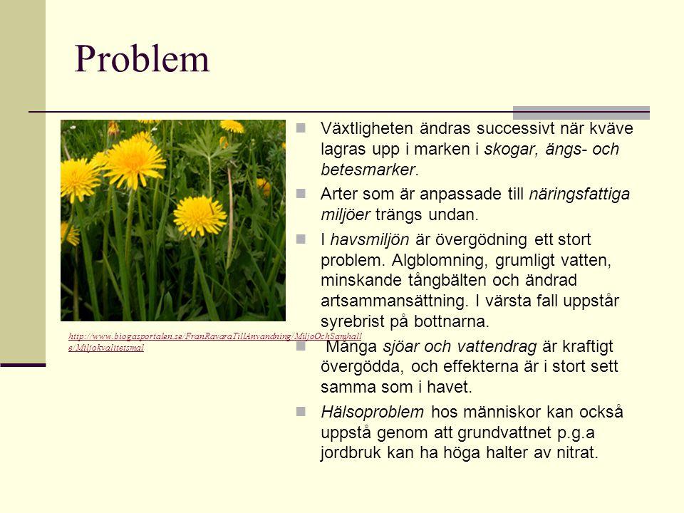 Problem Växtligheten ändras successivt när kväve lagras upp i marken i skogar, ängs- och betesmarker.