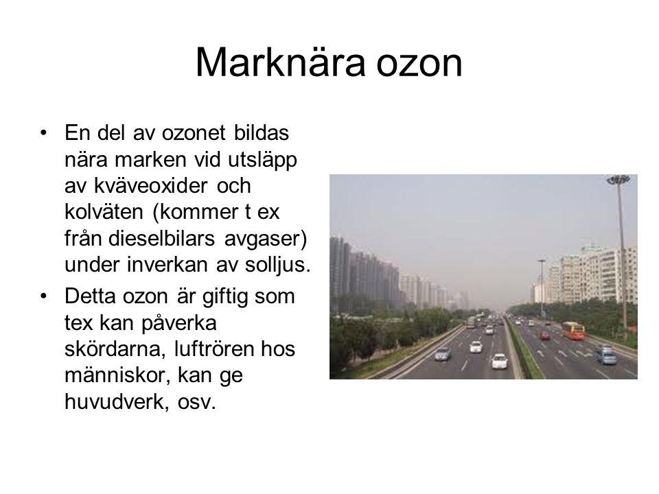 Marknära ozon