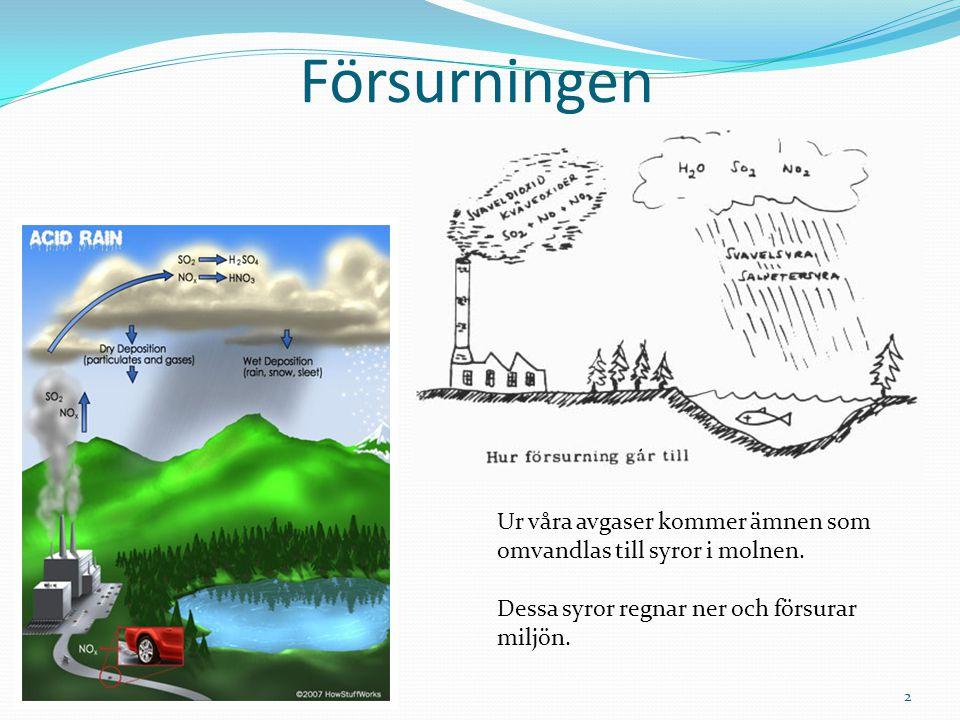 Försurningen Ur våra avgaser kommer ämnen som omvandlas till syror i molnen.
