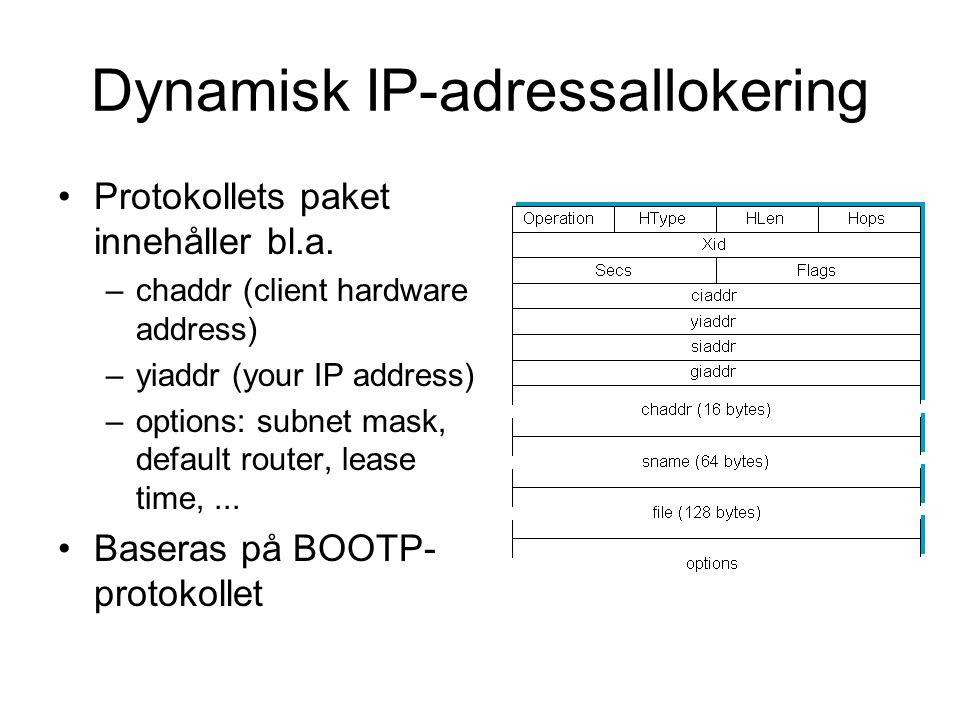 Dynamisk IP-adressallokering
