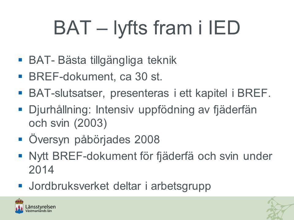 BAT – lyfts fram i IED BAT- Bästa tillgängliga teknik