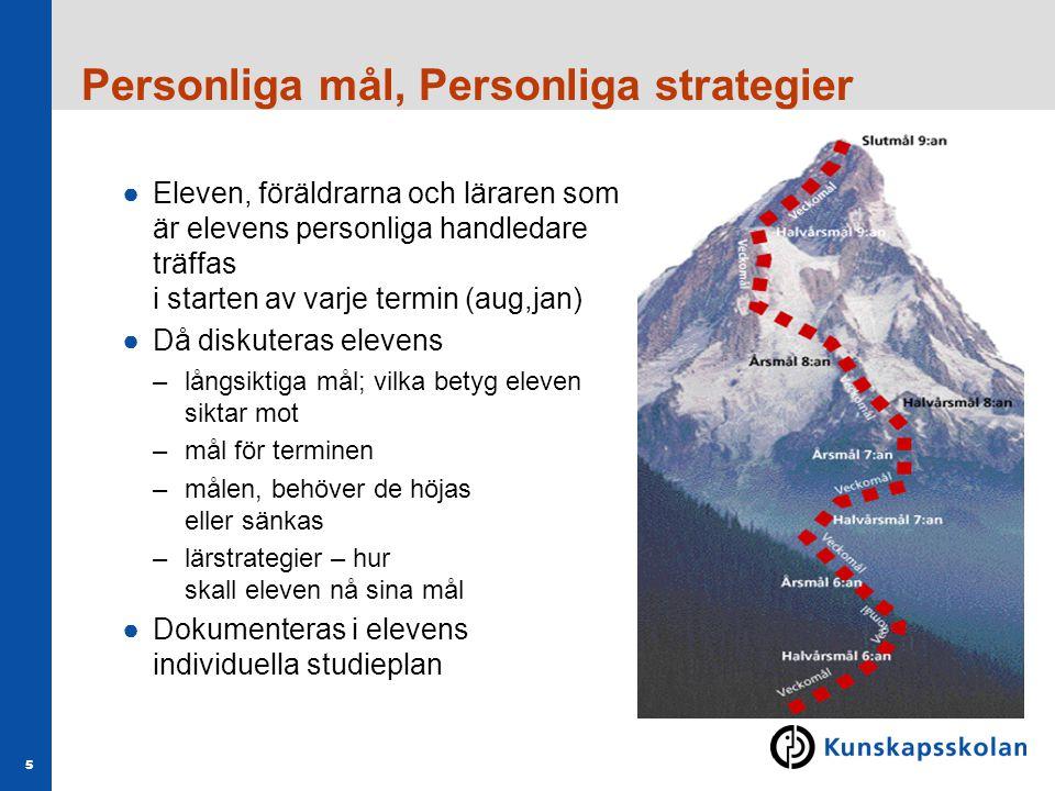 Personliga mål, Personliga strategier