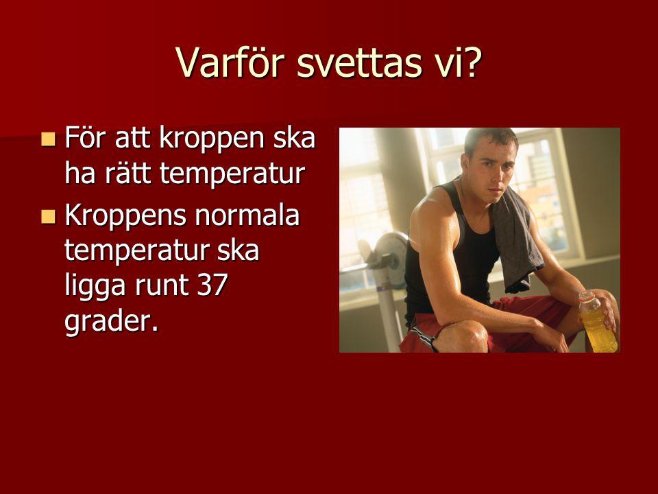 Varför svettas vi För att kroppen ska ha rätt temperatur