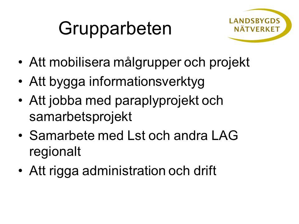 Grupparbeten Att mobilisera målgrupper och projekt