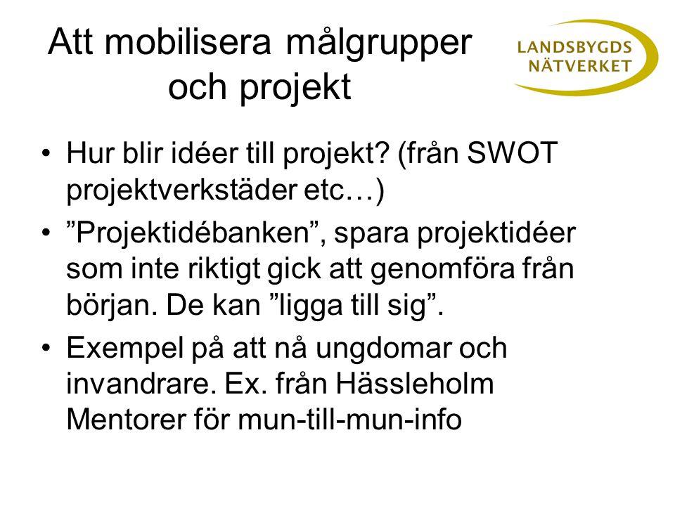 Att mobilisera målgrupper och projekt