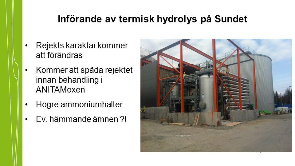 Införande av termisk hydrolys på Sundet