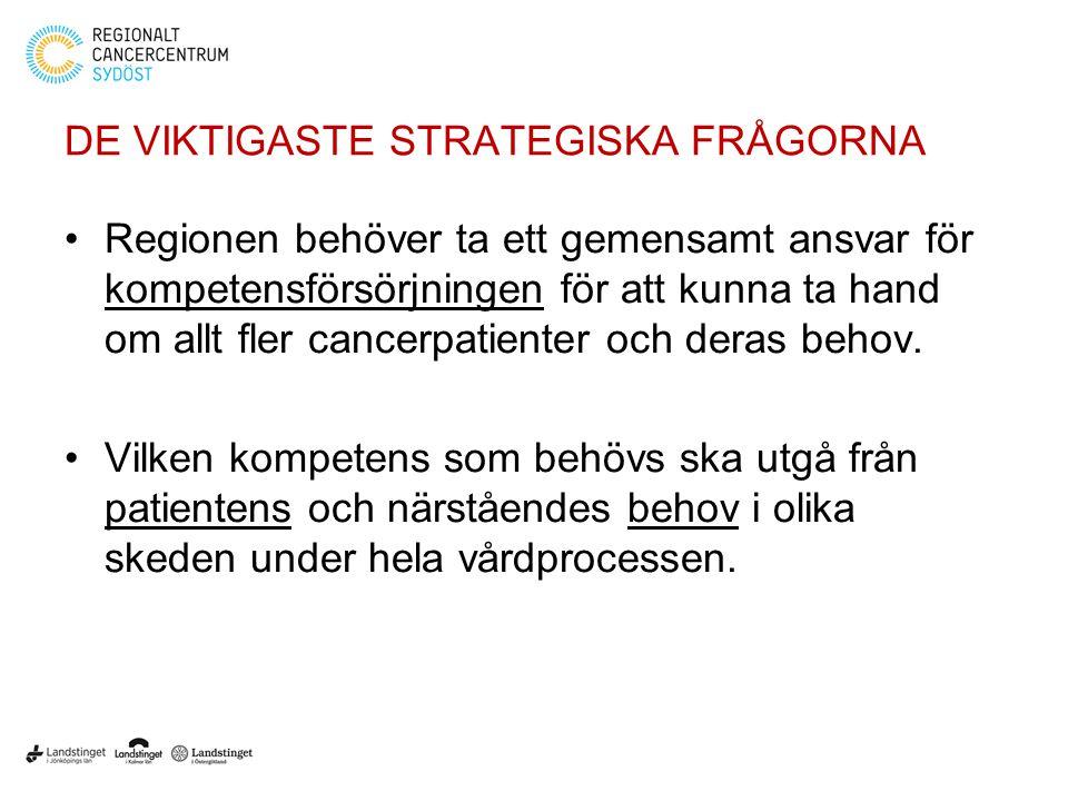 DE VIKTIGASTE STRATEGISKA FRÅGORNA