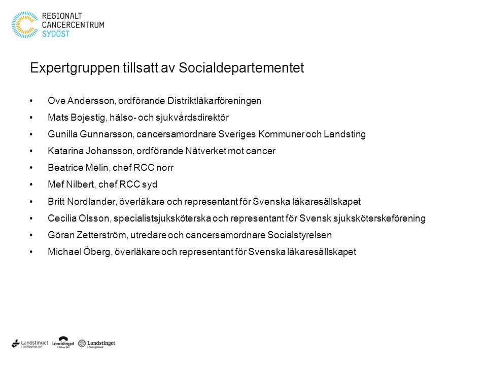 Expertgruppen tillsatt av Socialdepartementet
