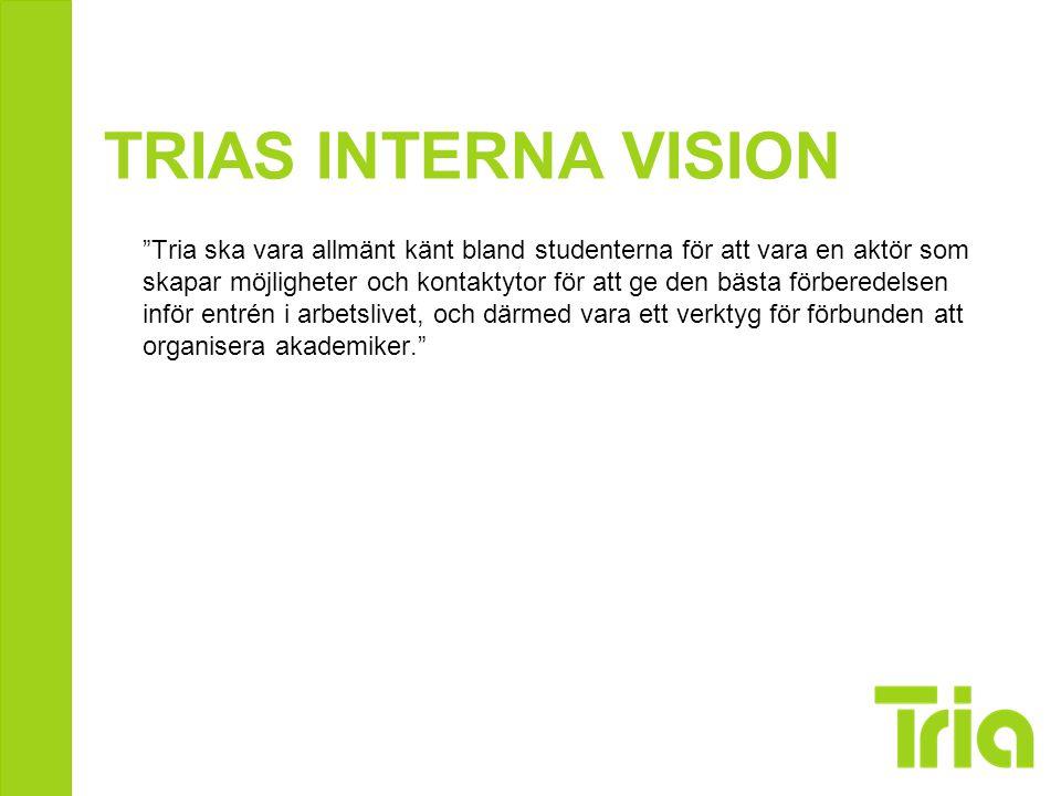 TRIAS INTERNA VISION
