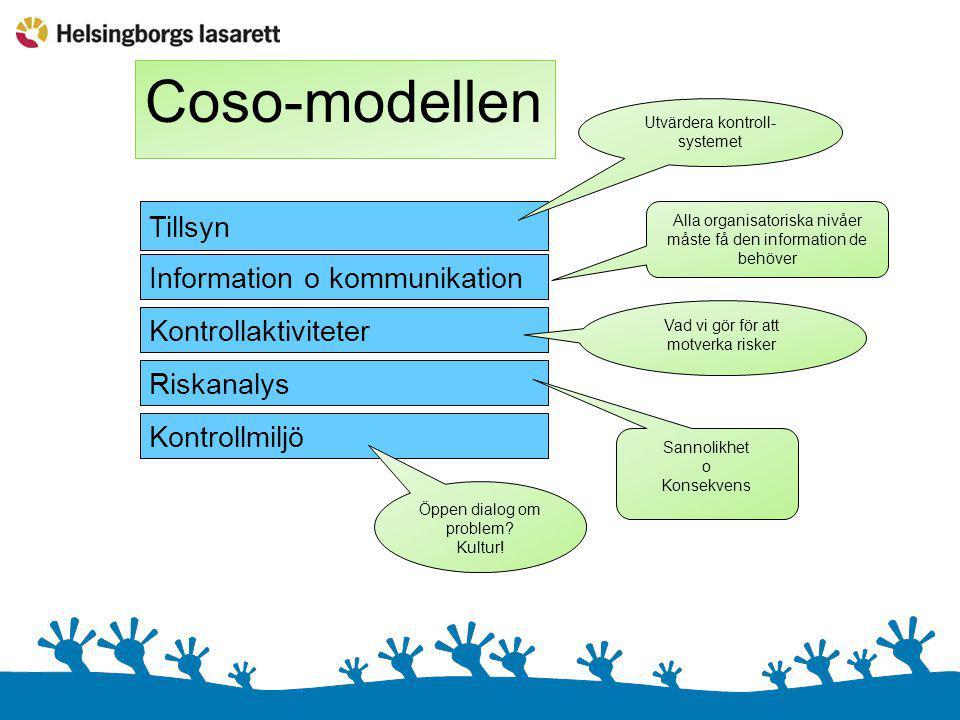 Coso-modellen Tillsyn Information o kommunikation Kontrollaktiviteter