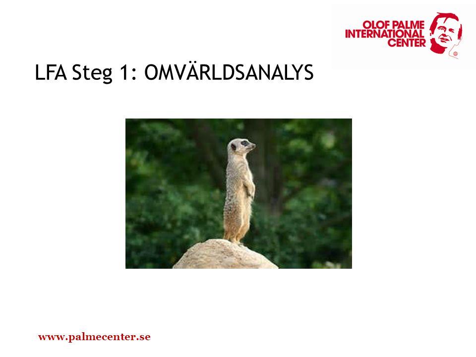 LFA Steg 1: OMVÄRLDSANALYS