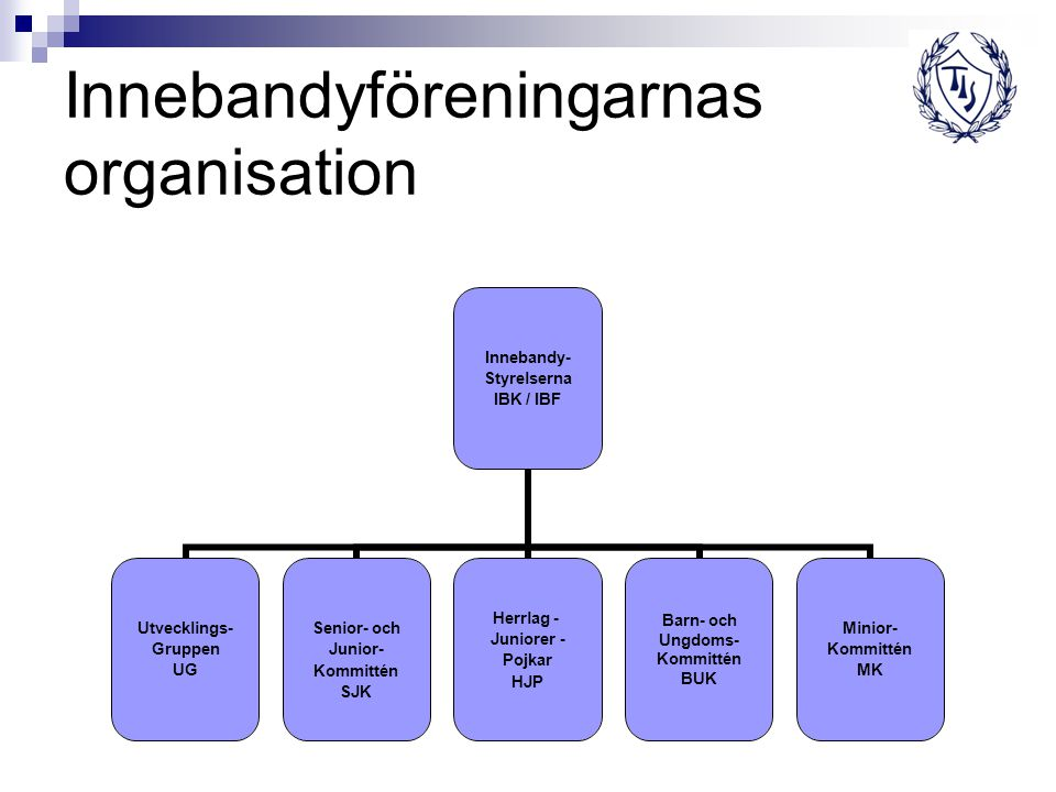 Innebandyföreningarnas organisation
