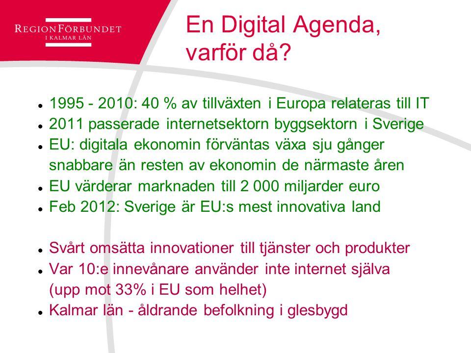 En Digital Agenda, varför då