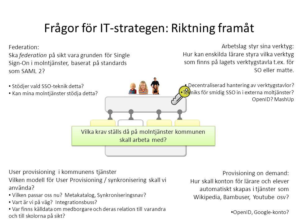 Frågor för IT-strategen: Riktning framåt