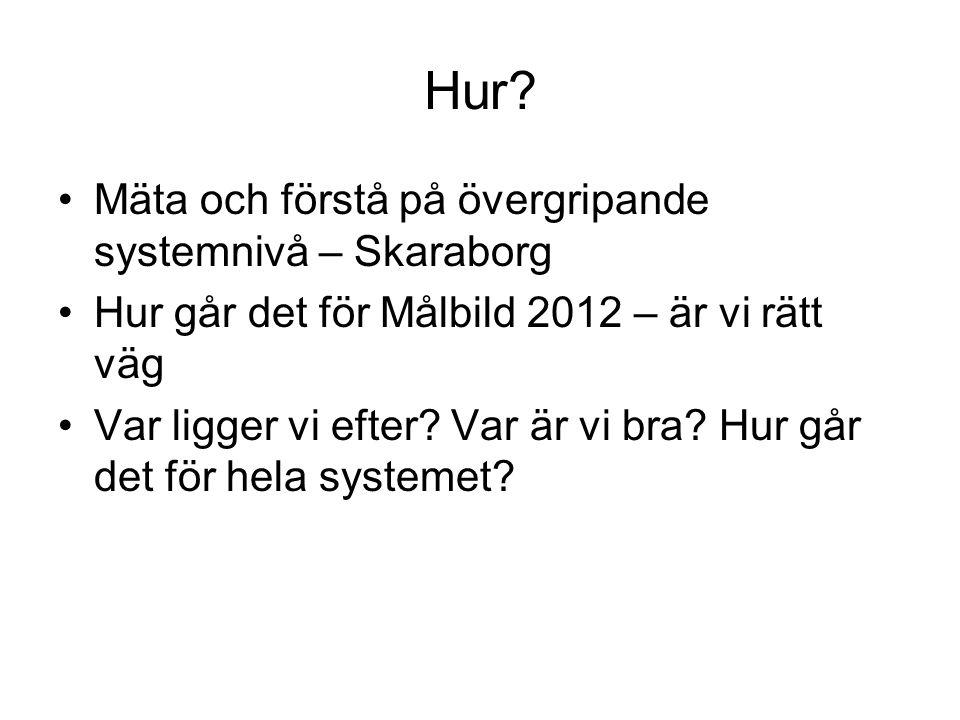 Hur Mäta och förstå på övergripande systemnivå – Skaraborg