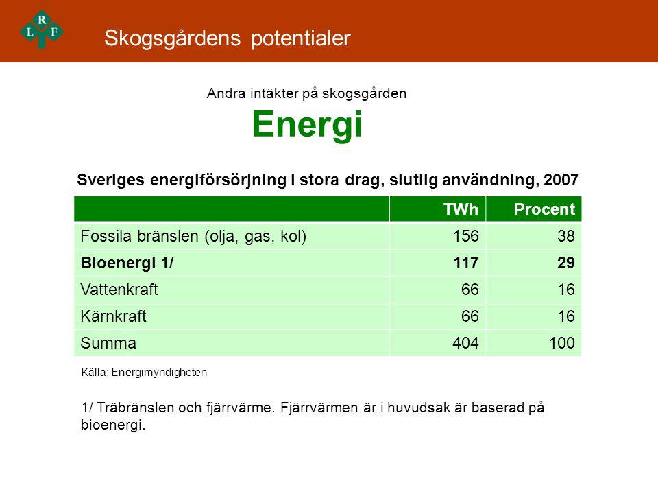 Andra intäkter på skogsgården Energi
