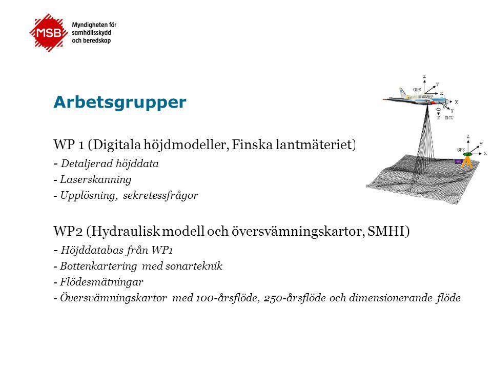 Arbetsgrupper WP 1 (Digitala höjdmodeller, Finska lantmäteriet)
