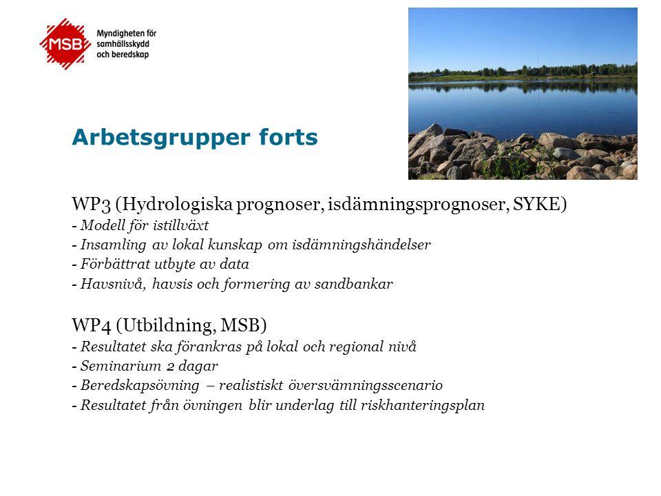 Arbetsgrupper forts WP3 (Hydrologiska prognoser, isdämningsprognoser, SYKE) - Modell för istillväxt.