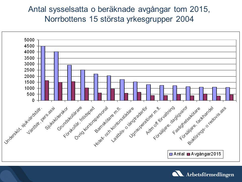 Antal sysselsatta o beräknade avgångar tom 2015, Norrbottens 15 största yrkesgrupper 2004