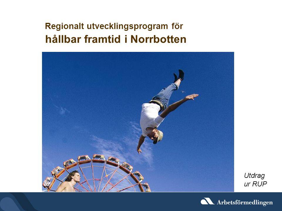 Regionalt utvecklingsprogram för hållbar framtid i Norrbotten