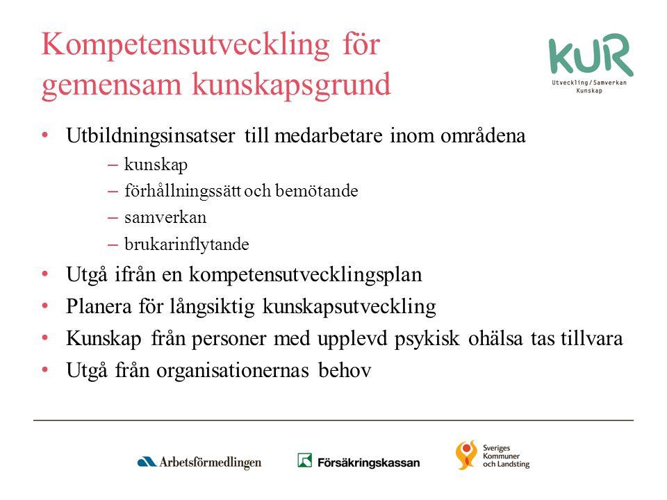 Kompetensutveckling för gemensam kunskapsgrund