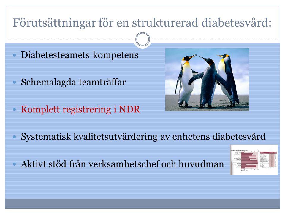 Förutsättningar för en strukturerad diabetesvård: