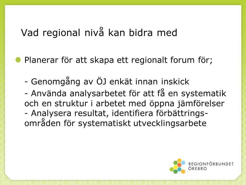 Vad regional nivå kan bidra med