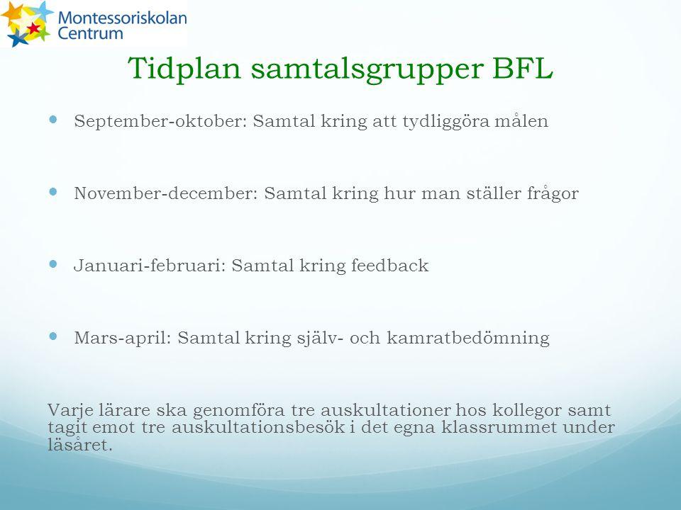 Tidplan samtalsgrupper BFL