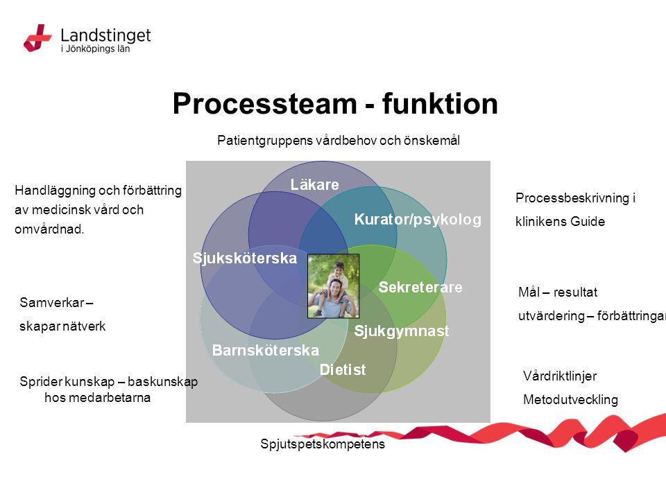 Processteam - funktion