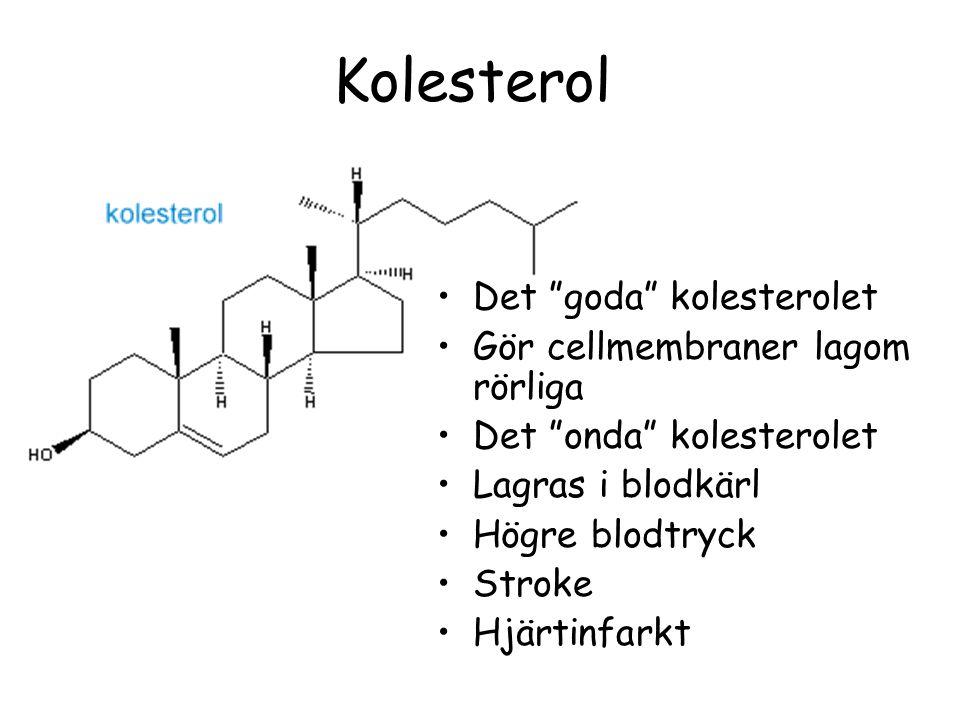 Kolesterol Det goda kolesterolet Gör cellmembraner lagom rörliga