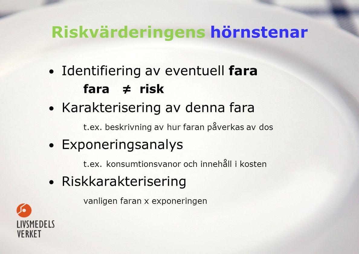 Riskvärderingens hörnstenar