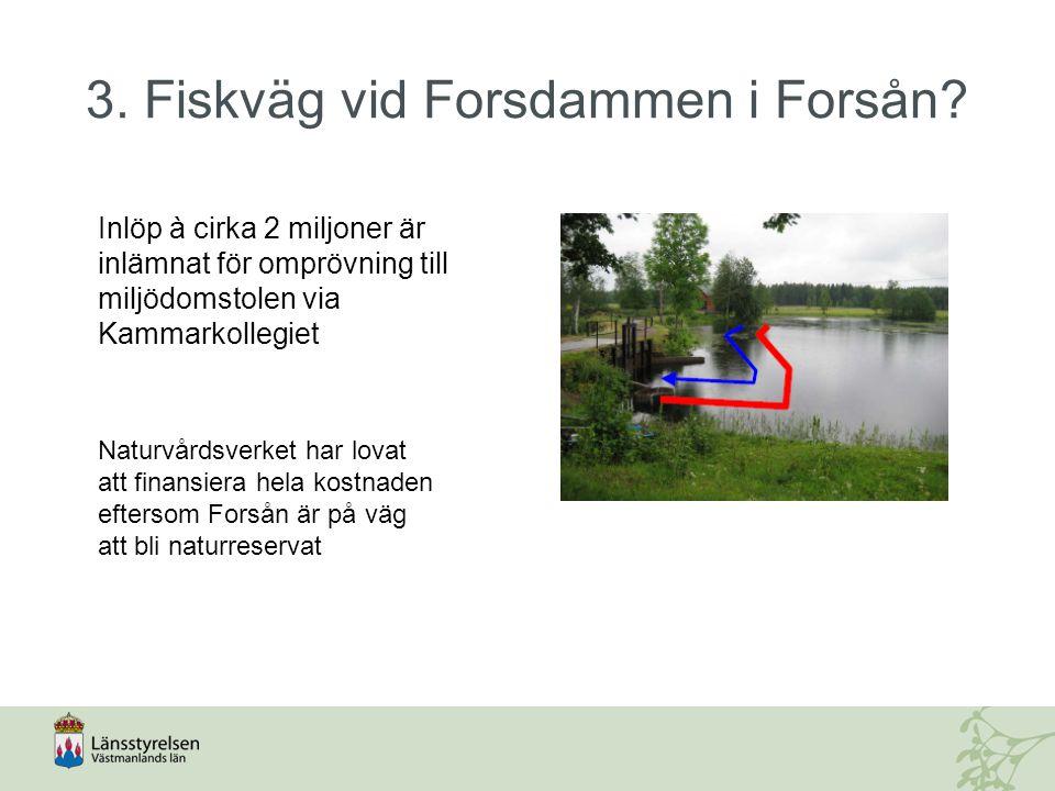 3. Fiskväg vid Forsdammen i Forsån