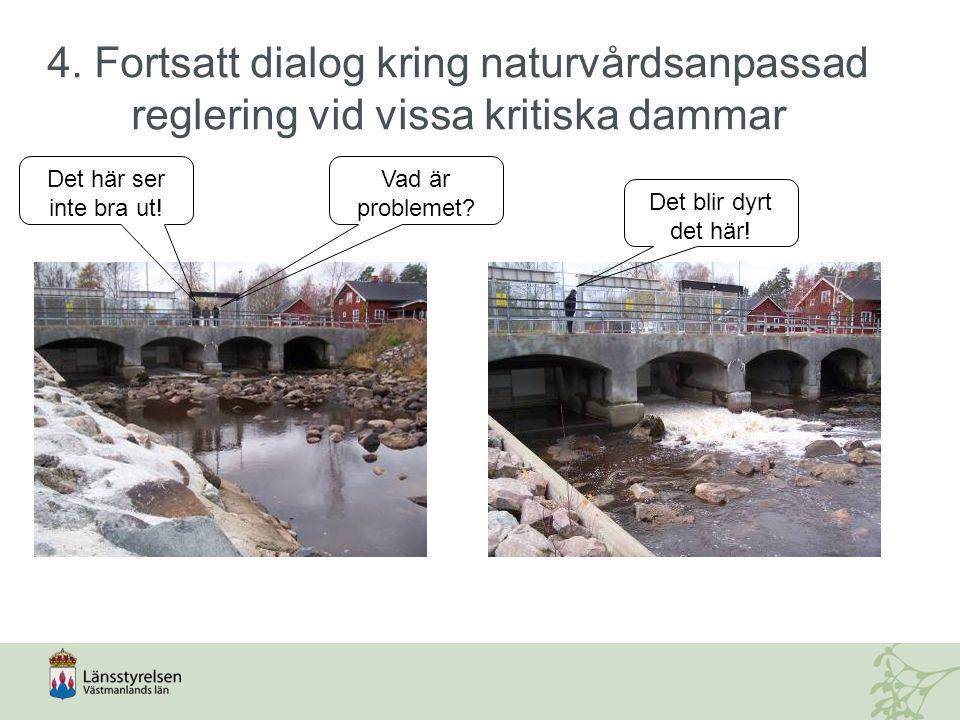 4. Fortsatt dialog kring naturvårdsanpassad reglering vid vissa kritiska dammar