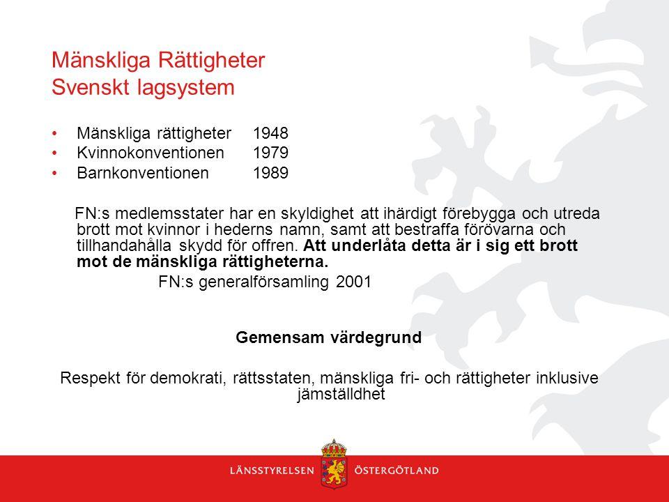 Mänskliga Rättigheter Svenskt lagsystem