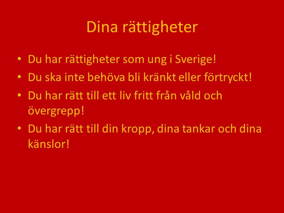 Dina rättigheter Du har rättigheter som ung i Sverige!