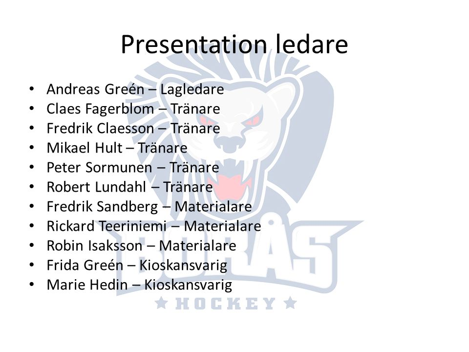 Presentation ledare Andreas Greén – Lagledare