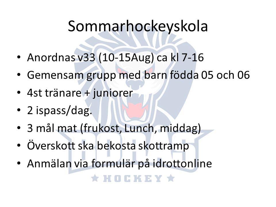 Sommarhockeyskola Anordnas v33 (10-15Aug) ca kl 7-16