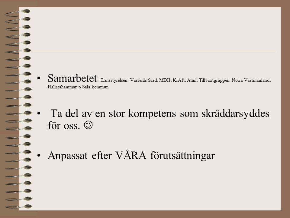 Samarbetet Länsstyrelsen, Västerås Stad, MDH, KrAft, Almi, Tillväxtgruppen Norra Västmanland, Hallstahammar o Sala kommun