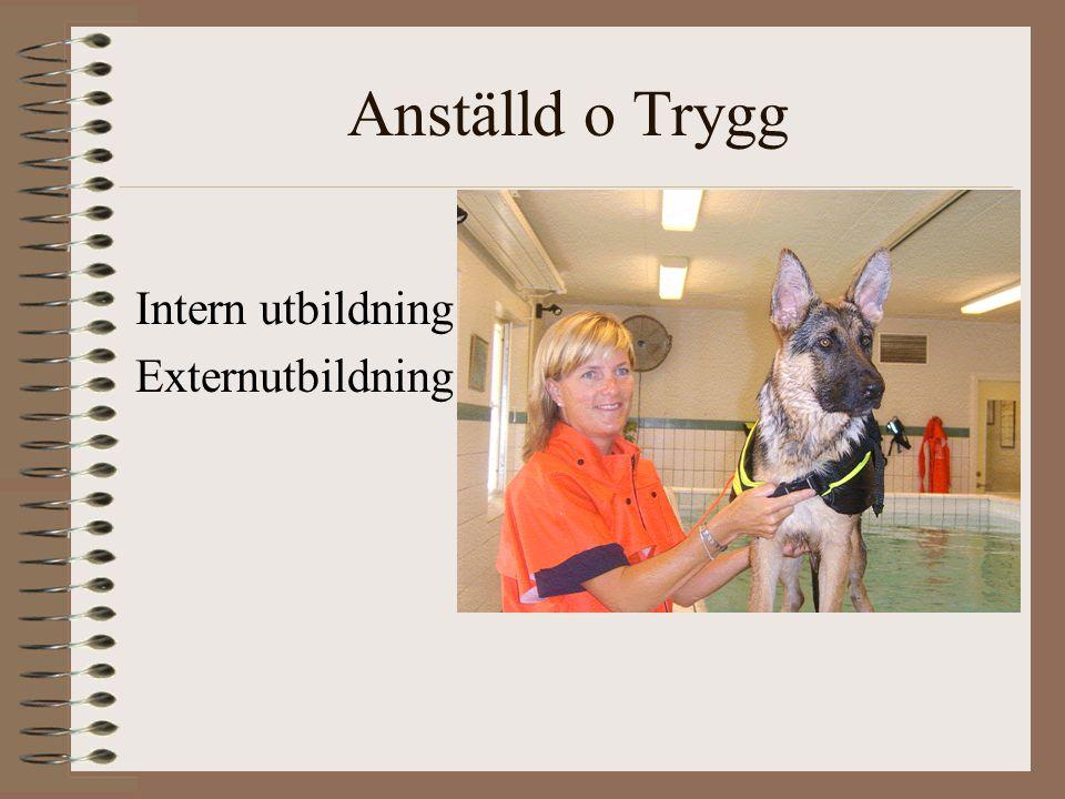 Anställd o Trygg Intern utbildning Externutbildning