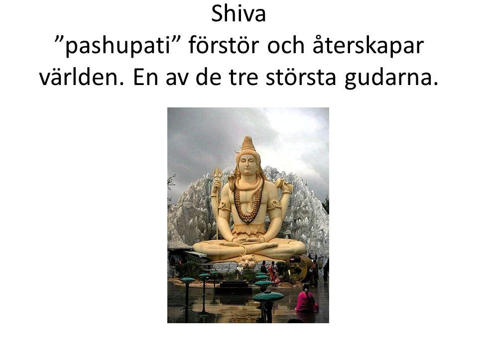 Shiva pashupati förstör och återskapar världen
