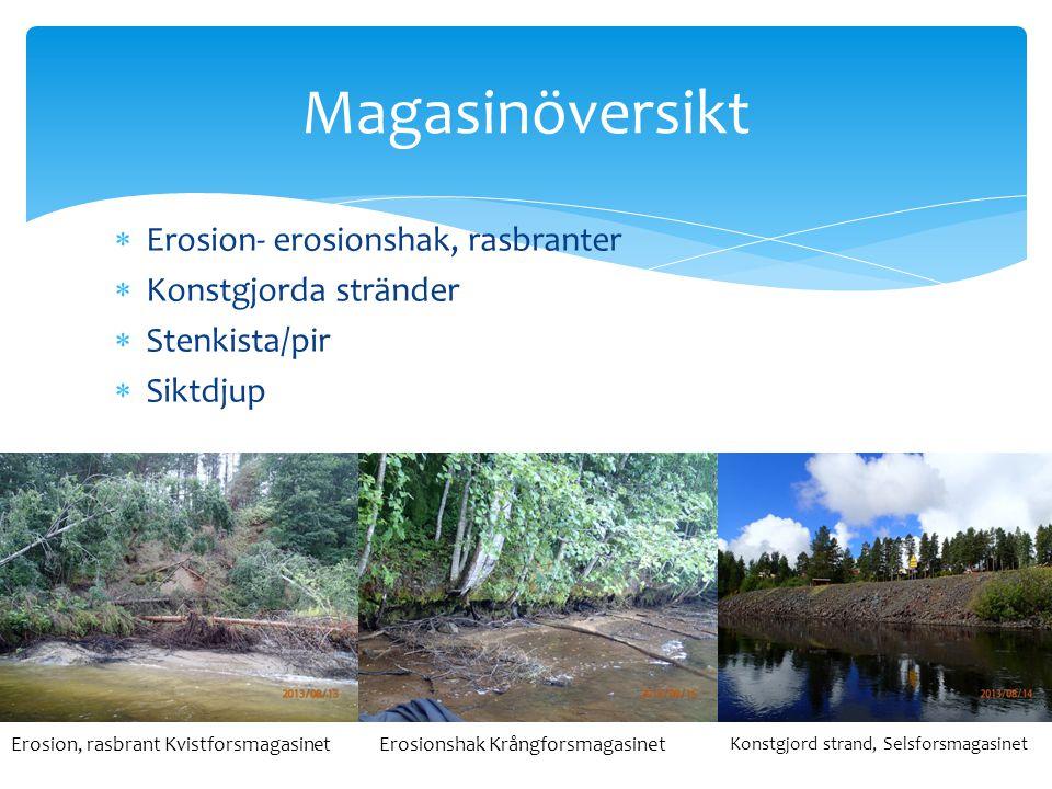 Magasinöversikt Erosion- erosionshak, rasbranter Konstgjorda stränder