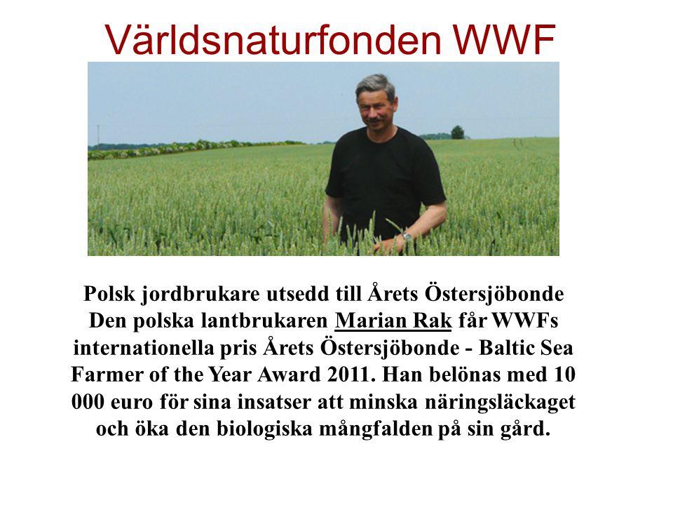 Världsnaturfonden WWF