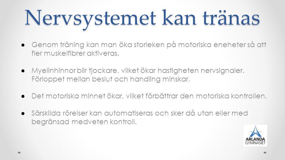 Syresättning En avgörande roll för människans prestationsförmåga.