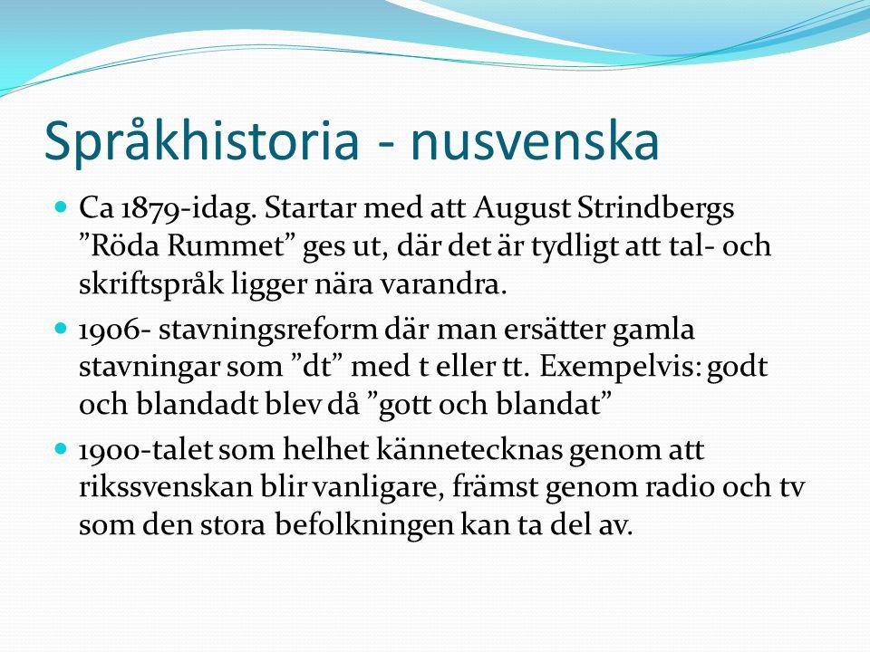 Språkhistoria - nusvenska